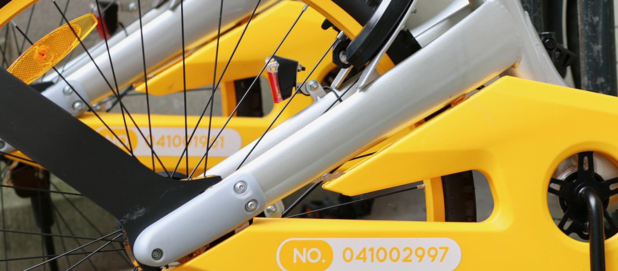 Leisure Biciclette
